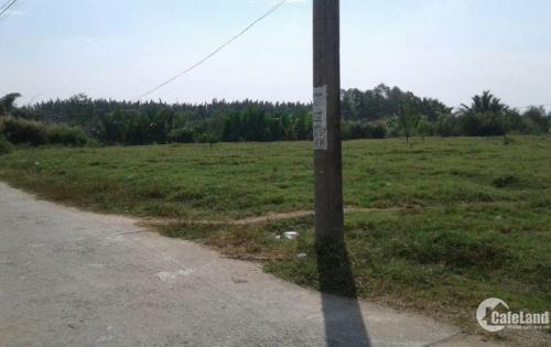 Tôi bán lô đất nông nghiệp tại xã Long Thới huyện Nhà Bè giá mền cho a/c/e đầu tư