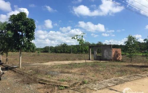 Đất gần cổng số 3 sân bay giá rẻ,cơ sở hạ tầng hoàn thiện giá chỉ 2.2triệu/m2 .0901368085