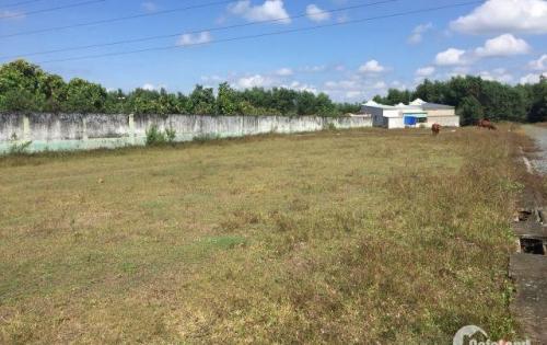 Bán đất Bàu Cạn, sổ đỏ, dự án sân bay Long Thành 500m2 chỉ 1,7 tỷ