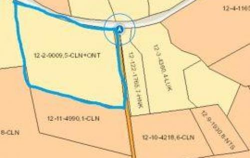 Bán đất chính chủ Bàu Cạn, 9009m2 chỉ 1 triệu/m2, chính chủ, sổ đỏ sang tên ngay