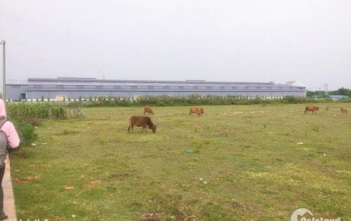 Đất nền ngay Tp Phan Thiết giá rẻ 300 triệu/nền xã Phong nẫm, SHR