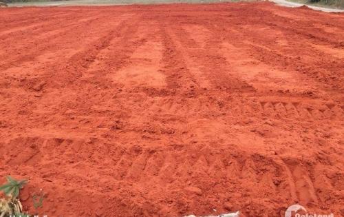 Đất nền chính chủ mặt tiền đường nhựa 5m, xã Phong Nẫm, Tp Phan Thiết