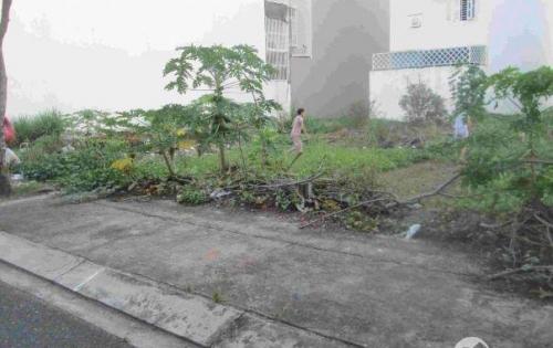 Để lại rẻ 7 lô đất nhà mt Liên Phường Q9 chỉ 20tr/m2, SHR, thổ cư 100%