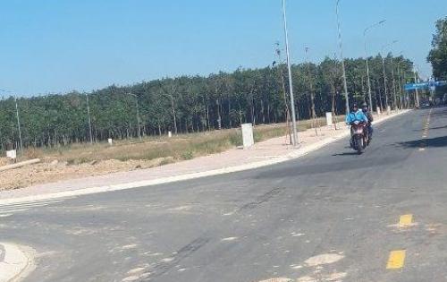 Đất sổ đỏ, đối diện KCN Nam Tân Uyên, giá chỉ từ 8 triệu/m2.