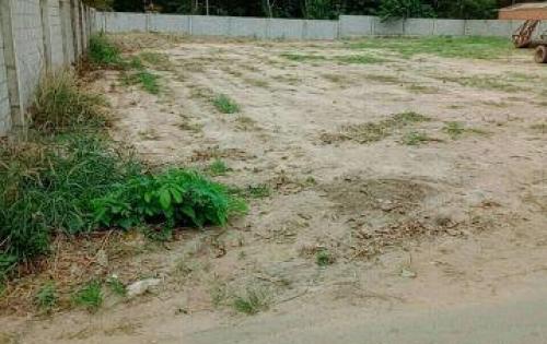 Cần bán gấp 6 lô đất ngay trên đường Phan Đăng Lưu xã Tân An, Thủ Dầu Một, Bình Dương
