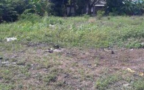 Tôi cần bán gấp 1800 m2 đất thổ cư xã Nhị Thành, Thủ Thừa, Long An. Giá: 2.5 triệu/m2