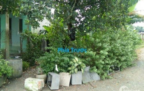 Chính chủ cần tiền bán gấp lô đất khu phố Bình Thuận 2, Bình Dương.