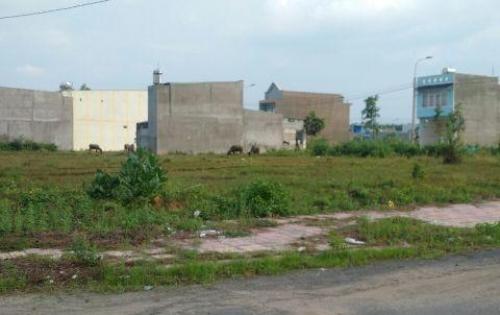 Bán Đất gần nhà Thờ Sài Quất, SHR, thổ cư 100%, chỉ 6,7tr/m2