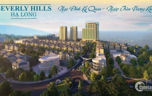 Dự án Beverly Hills Hạ Long. Cam kết lợi nhuận 100%. 0899277577