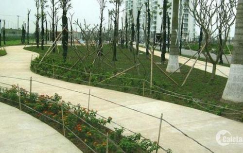 Chính chủ bán gấp biệt thự Arden Park, Hà Nội Garden City, Thạch Bàn, Long Biên, mặt ngoài, giá tốt!