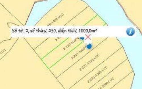 Đất 1000m2 chỉ 1 tỷ, Cần vốn nên chính chủ bán gấp