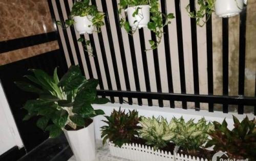 Bán nhà mới đẹp 1 trệt 1 lầu hẻm 388, Nguyễn Văn Cừ, An Khánh, Ninh Kiều, Cần Thơ