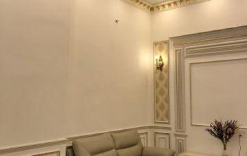Bán nhà đẹp (kiểu biệt thự) hẻm 1056 Huỳnh Tấn Phát Quận 7