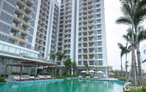 Bán gấp Shophouse Opal Garden, 175m2, căn thương mại kết hợp ở, gần ngay Phạm Văn Đồng, view đẹp, giá cực tốt