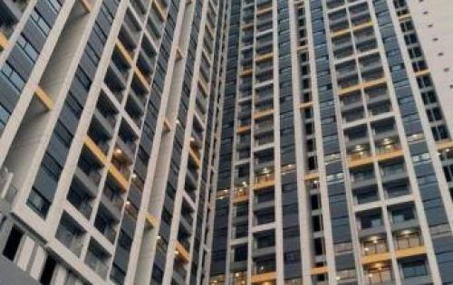 cần cho thuê gấp căn hộ quận 8 giá rẻ nhà mới 100%