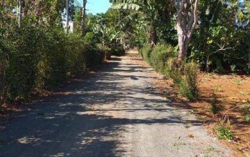 Lô thổ cư cách đường Vành Đai quốc lộ 14-26 (eatu)