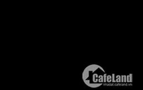 Cần bán đất hai mặt tiền Quốc lộ 50, bình chánh, 100m2, 980 triệu, LH :0904814594. Đất mặt tiền Quốc Lộ 50 bình chánh,  tắt ngan đại lộ Nguyễn Văn Linh chạy vào