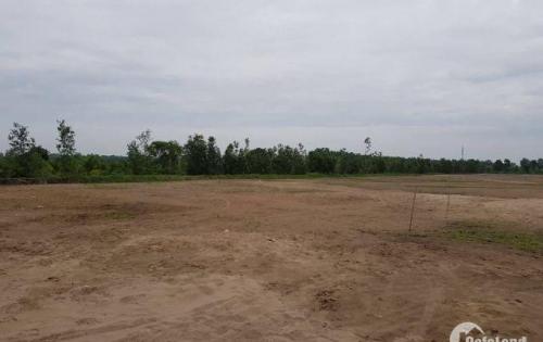 Cơ hội sở hữu nền đất tại bình chánh, chỉ 720 triệu/nền giai đoạn 1
