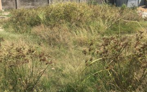 Bán đất nền thổ cư khu An Phú Tây – Hưng Long – Bình Chánh