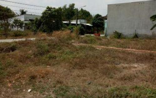 Đất bình chánh mặt tiền đường  vườn thơm cần bán gấp giá rẻ 750tr shr