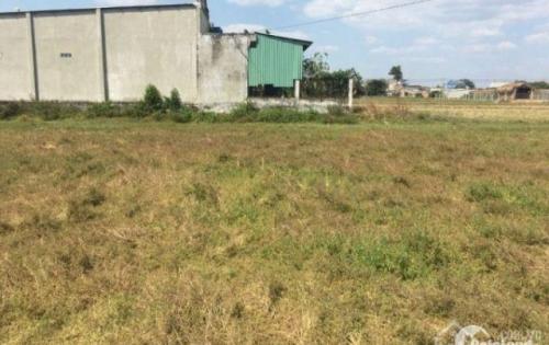Duy nhất 2 lô đất giá rẻ nhất Vĩnh Lộc B (Bình Chánh 100%) chỉ 375tr/50m2.