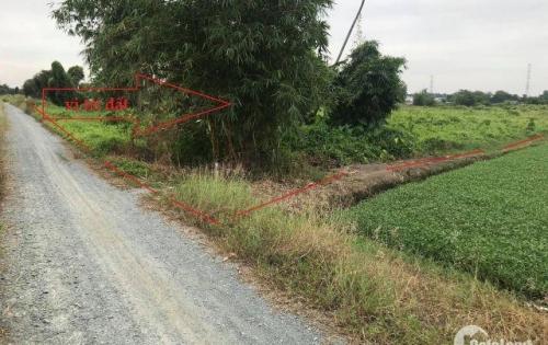Bán 5800m2 đất vườn giá rẻ tại ấp 7, xã Bình Mỹ, huyện Củ Chi