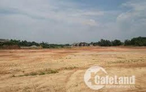 Bán Gấp Nền Đất Thổ Cư 80M2, Võ Văn Bích, Củ Chi, 800 Triệu/nền, Lh 0384692937