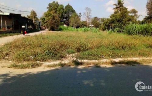 Tôi cần tiền bán gấp miếng đất đường số 90, xã Tân Phú Trung, Củ chi.DT: 80m2, 780TR.tho cu 100%.