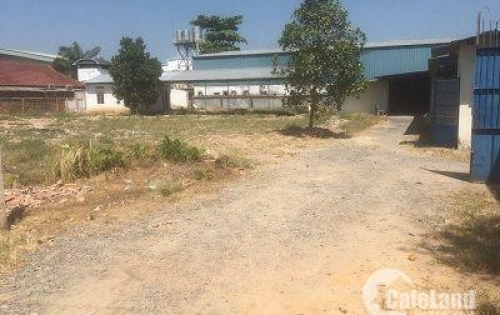 Nhà xưởng và đất trống diện tích 4.200m giá 15 triệu/m đường Đông Thạnh 8.