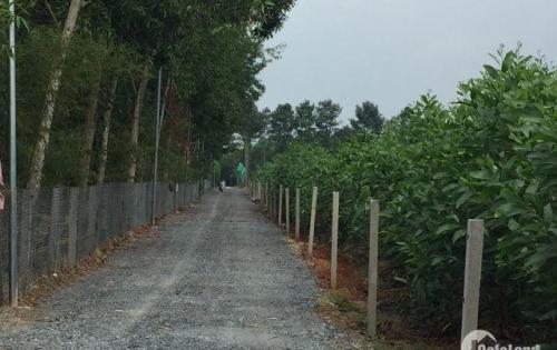 Chính chủ cần bán gấp 1 mẫu đất Tân Hiệp, có 200m2 thổ cư chỉ 1.7 triệu/m2.