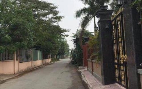 Cần Tiền Bán Gấp Lô Đất Phước Thái - SHR Thổ Cư 100%. Xây dựng tự do
