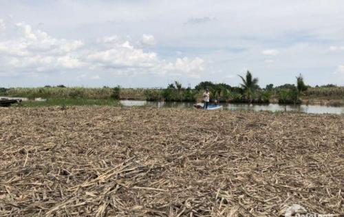 Cần bán lô đất hiếm mặt tiền đường Nguyễn Thị Minh Khai xã Phú Đông huyện Nhơn Trạch.