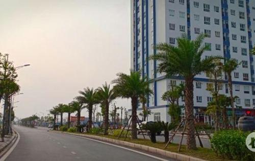 Chính chủ bán gấp đất nền quận Hà Đông cực rẻ, liền kề B1.4 Thanh Hà Cienco5.