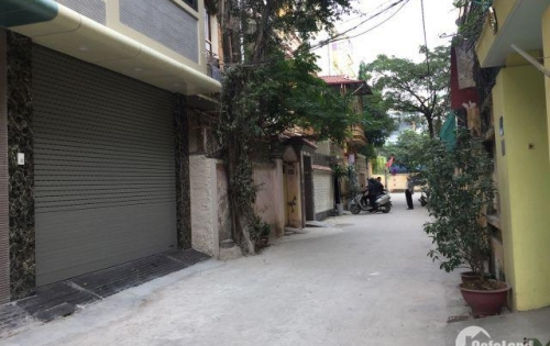 Chính chủ bán nhà phân lô dãn dân ngõ 299 Hoàng Mai, Mai Động, 35m2, 5t, ô tô vào nhà, giá 4,2 tỷ