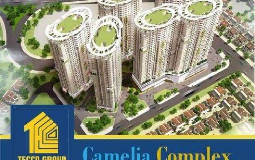 Bán căn hộ Tecco Camelia Complex giá tốt nhất thị trường