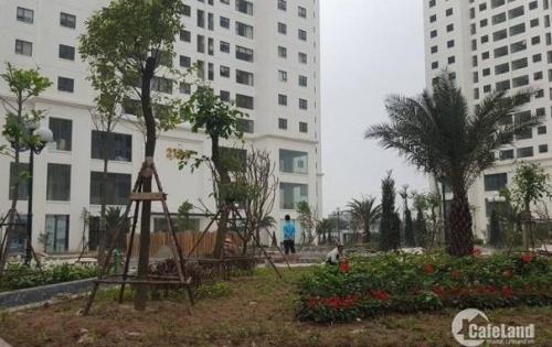 Sở hữu căn hộ 3ngủ, ban công Đông Nam đón gió, giá tốt nhất tại CC Goldmark city