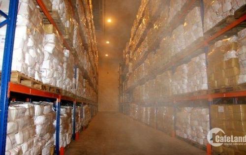 Cho thuê 2600m2 nhà máy chế biến thủy sản đông lạnh trong KCN Tân Bình