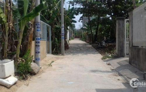 Cần bán gấp lô đất gần chợ Hương Phước, Phước Tân, Biên Hòa. Lh: 0346 99 38 39