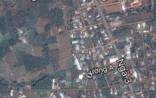 Bán đất mặt tiền đường A1, thuộc thôn 4 Cư Ebur, dt: 10 x 25m