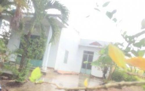 bán đất trồng cây lâu năm có nhà có sổ