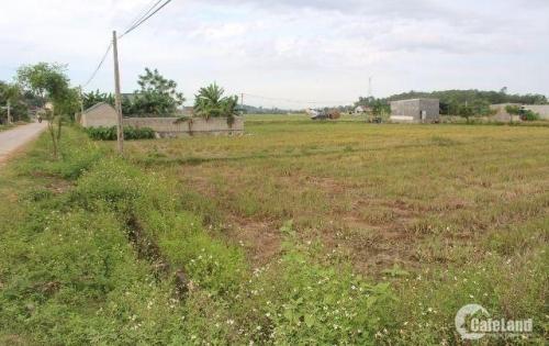 Bán gấp nền đất 2015m2 ngang 23m Huyện Bình Chánh CHỈ 2.4tr/m2 gần KCN Kizuna LH 0779.052.533 Anh Phong