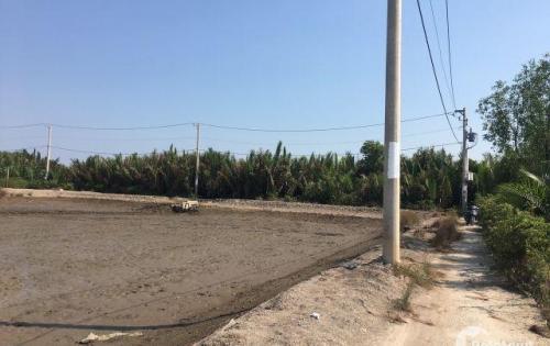 Cần bán gấp lô đất 1000m2 giá siêu rẻ tại xã An Thới Đông, Cần Giờ.