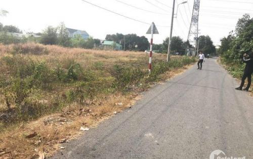 Bán gấp khu đất xưởng đã phân lô, mặt tiền đường Phạm Văn Cội