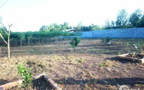 Bán 1.5 ha đất Bàu Cạn, gần hồ Cầu Mới.