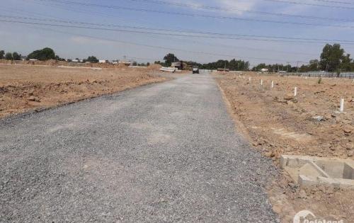 Công ty Asia Land chính thức mở bán những nền cuối cùng của dự án Eco Town.