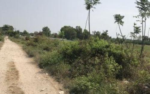 Đất Q.2-cần bán gấp lô đất gần trung tâm mua sắm, shr, giá 49tr/m2
