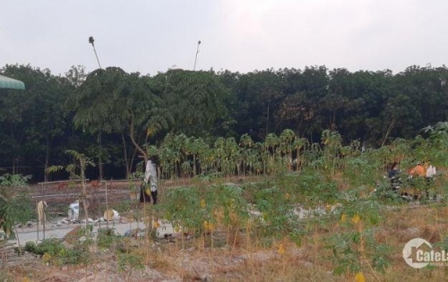 Cần bán gấp lô đất nền Phú Mỹ, giá 10 triệu/m2