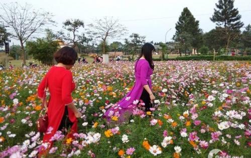 the phoenix garden,khu đô thị sinh thái cao cấp đan phượng,thị trấn phùng,