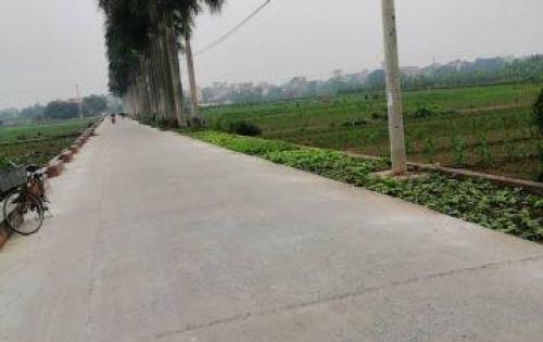 Bán gấp trong tháng lô đất tại Tô Khê – Phú Thị.