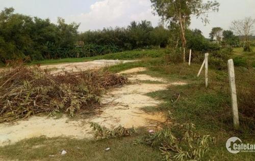 Cần bán gấp lô đất 500m2 đất thổ vườn giá 1,4tr/m2 tại cây Trôm Mỹ Khánh